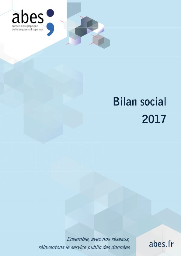 Couverture bilan social 2017